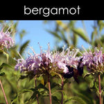Load image into Gallery viewer, BERGAMOT