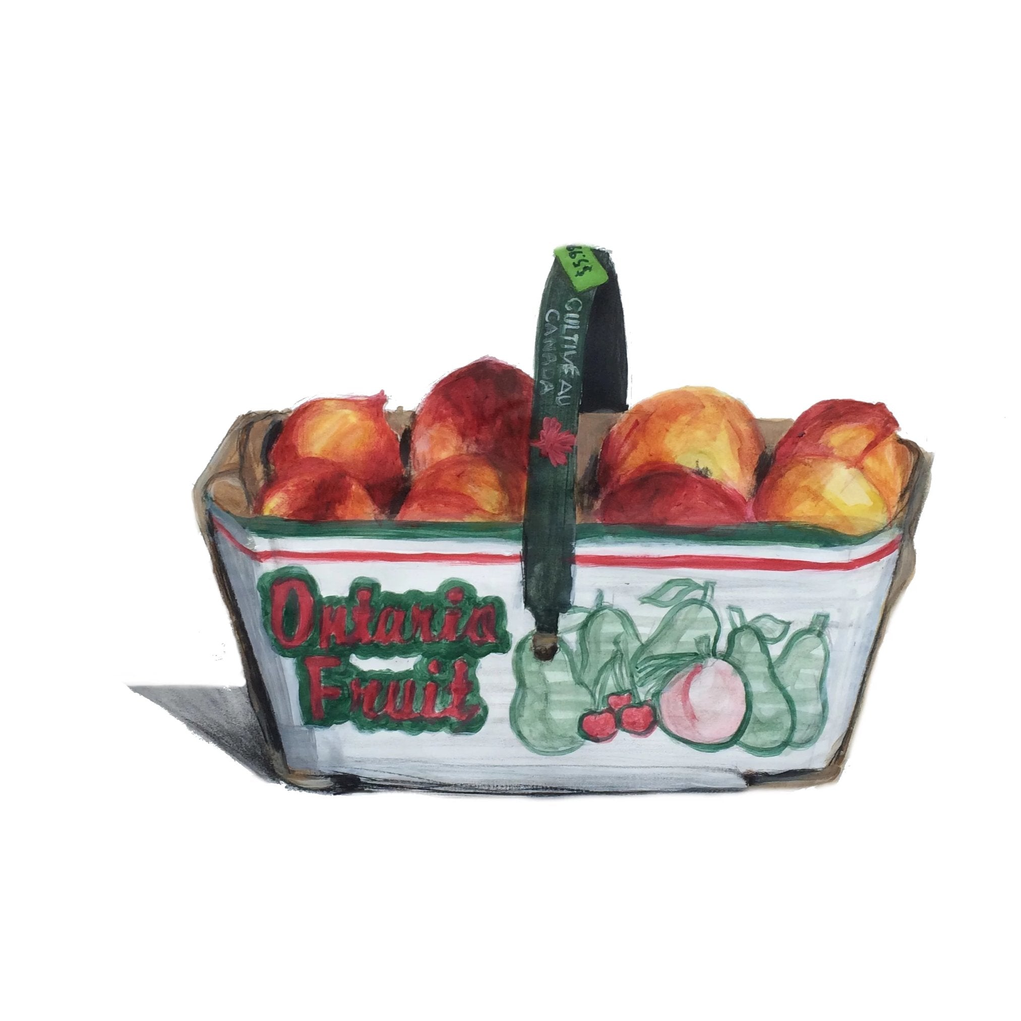 Painting of a fruit basket filled with Ontario peaches by Canadian artist Alli Boddy