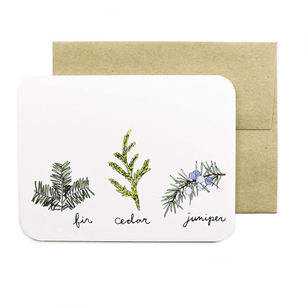 Made in Canada greeting card with drawing of fir, cedar and juniper sprigs.