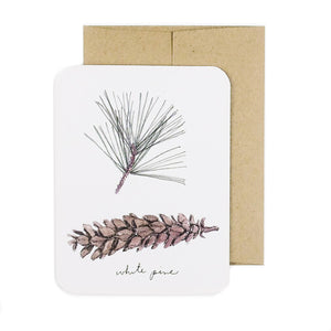 Made in Canada holiday greeting card with drawing of white pine needles and pinecone.