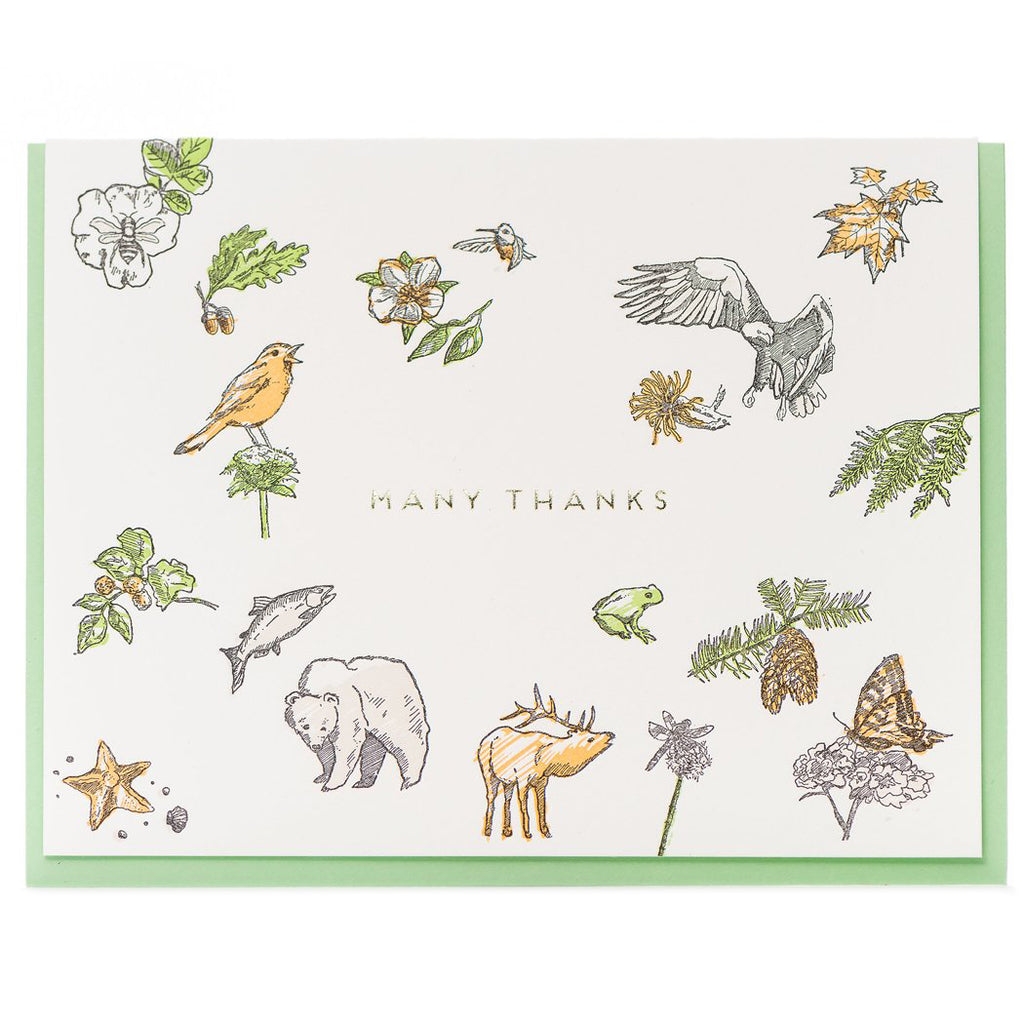 """Flora & Fauna"" Thank You Card - Porchlight Press"