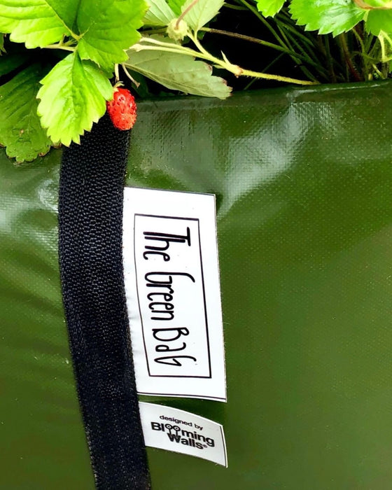 Blooming Walls Canada The Green Bag® Plant Bag, Medium - Grow fruits and vegetables