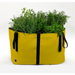 Blooming Walls Canada The Green Bag Plant Bag - Medium - Yellow
