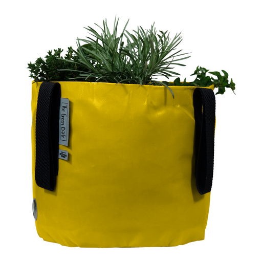Blooming Walls Canada The Green Bag Plant Bag - Yellow