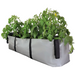 Blooming Walls Canada The Green Block Plant Bag - Large - Grey