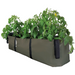 Blooming Walls Canada The Green Block Plant Bag - Large - Olive Green