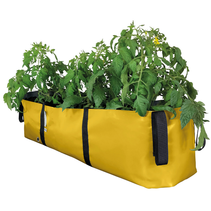 Blooming Walls Canada The Green Block Plant Bag - Large - Yellow