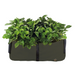 Blooming Walls Canada The Green Block Plant Bag - Medium - Olive Green