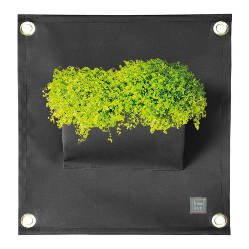 Blooming Walls Canada The Green Pockets Hanging Planter - Black