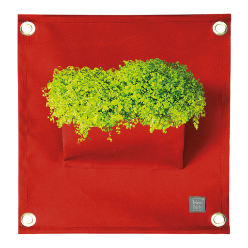 Blooming Walls Canada The Green Pockets Hanging Planter - Dark Red