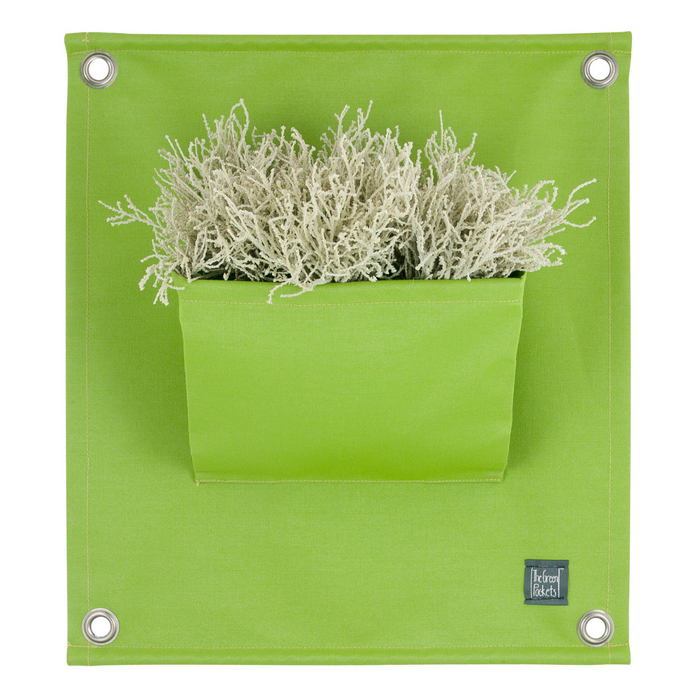 Blooming Walls Canada The Green Pockets Hanging Planter - Spring Green