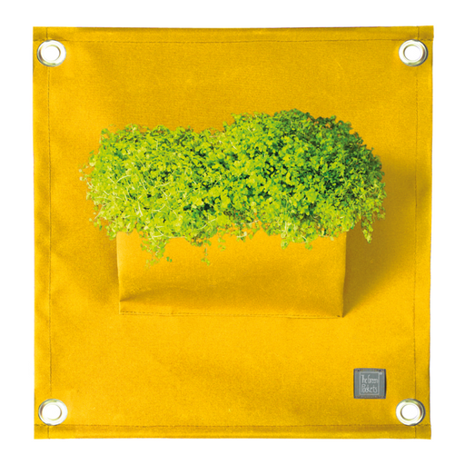 Blooming Walls Canada The Green Pockets Hanging Planter - Yellow