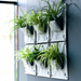 Blooming Walls Canada The Green Pockets Hanging Planters on indoor wall - all one colour