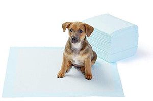 AmazonBasics Dog and Puppy Potty Training Pads, Regular (22 x 22 Inches) - Pack of 50
