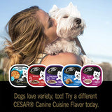 CESAR Soft Wet Dog Food Classic Loaf in Sauce Smoked Bacon & Egg Flavor, 3.5 oz. Easy Peel Tray