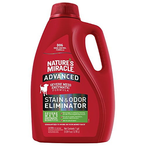 Nature's Miracle Advanced Stain and Odor Eliminator Dog, For Severe Dog Messes, 1 Gallon, Updated Formula (open container almost full)