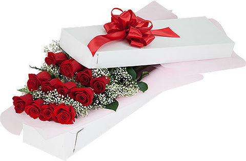 One dozen boxed roses with Baby's Breath