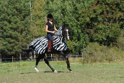 Manta Antimoscas Caballo Bucas. Buzz Off Riding Rug Zebra 5
