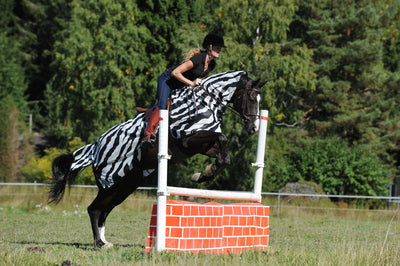 Manta Antimoscas Caballo Bucas. Buzz Off Riding Rug Zebra 4