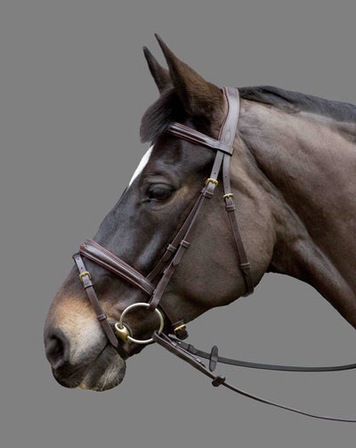 Mountain Horse Fairytale Bridle