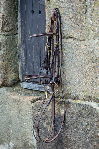 Mountain Horse Meteor Bridle
