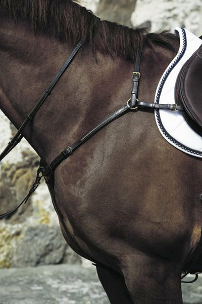 Mountain Horse Meteor Hunting Breastplate