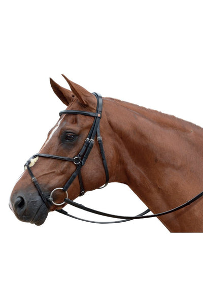 Albion Grackle Noseband