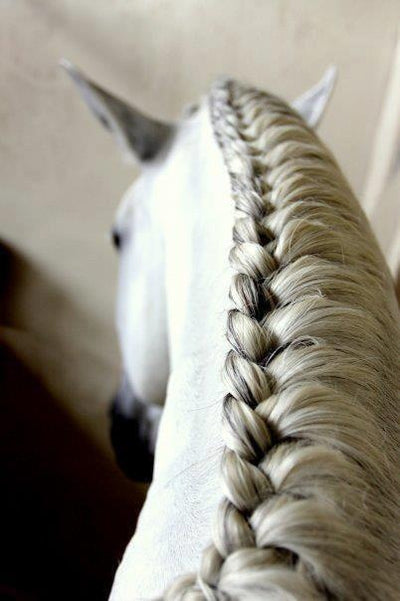 Supreme Perfect Plaits Holding Wax