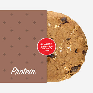 Protein Oatmeal Raisin - Vegan (Box of 12)