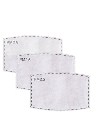 Disposable Mask Filters 3-pack