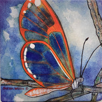 Susan Willis - Sandstone Trivet - Andromica Clearwing Butterfly