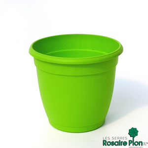 pot lime rosaire pion