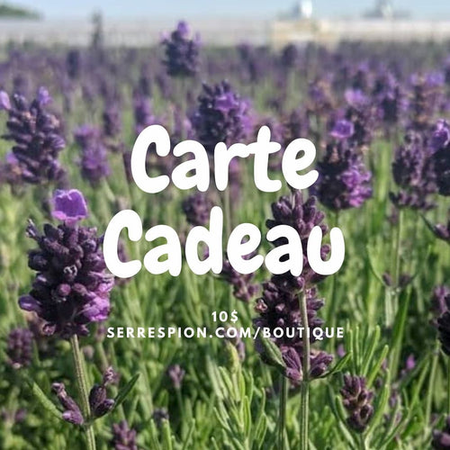 carte cadeau serrespion 10$ fines herbes