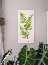 Load image into Gallery viewer, Fern leaves
