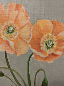 Day 5 Poppy | 9X12 inch original painting