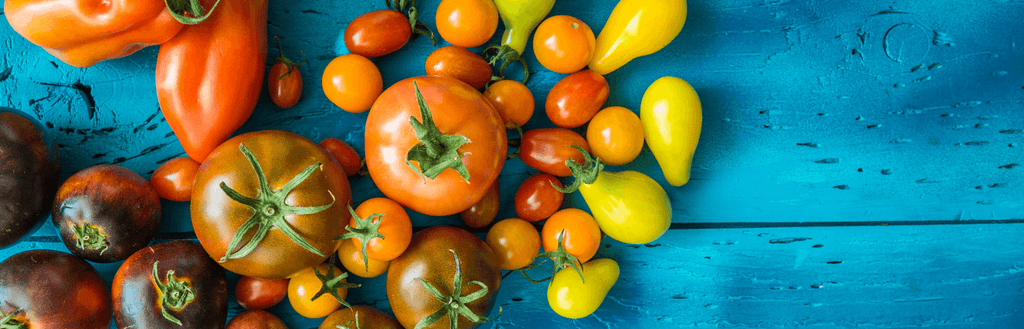 This is Your Brain on Carotenoids: Carotenoids (L & Z) to the Rescue