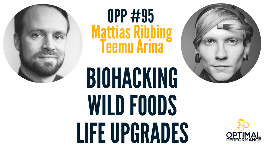 Biohacker Summit 2017: Memory Upgrades, Wild Foods, and Thermogenesis with Mattias Ribbing and Teemu Arina