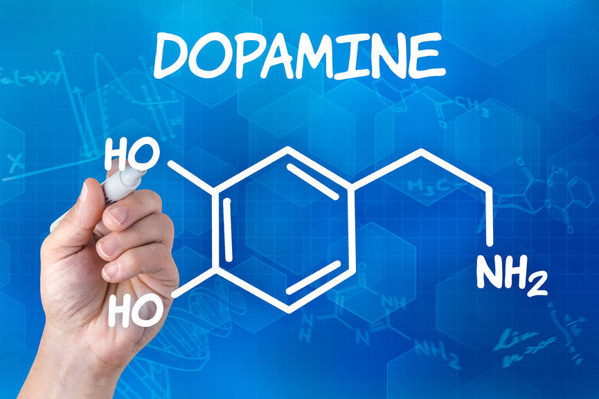 Dopamine Metabolism for Optimal Performance