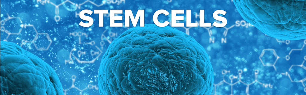 Hacking Stem Cells