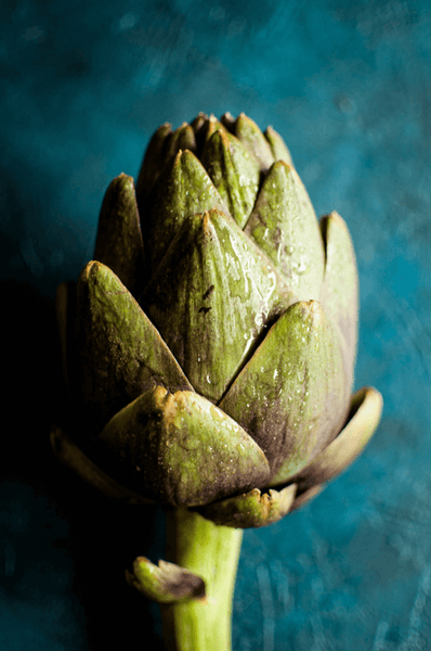 Artichoke-bulb-close-up