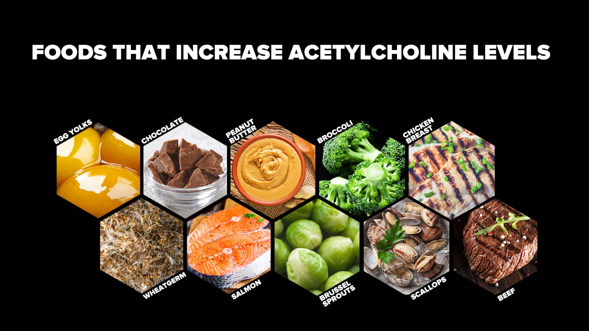 Foods That Increase Acetylcholine