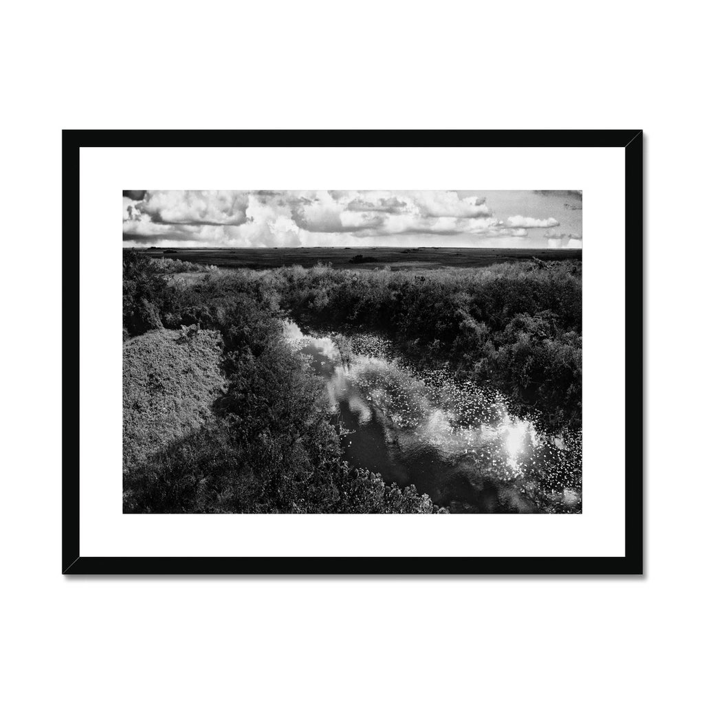 Everglades Untouched Framed & Mounted Print