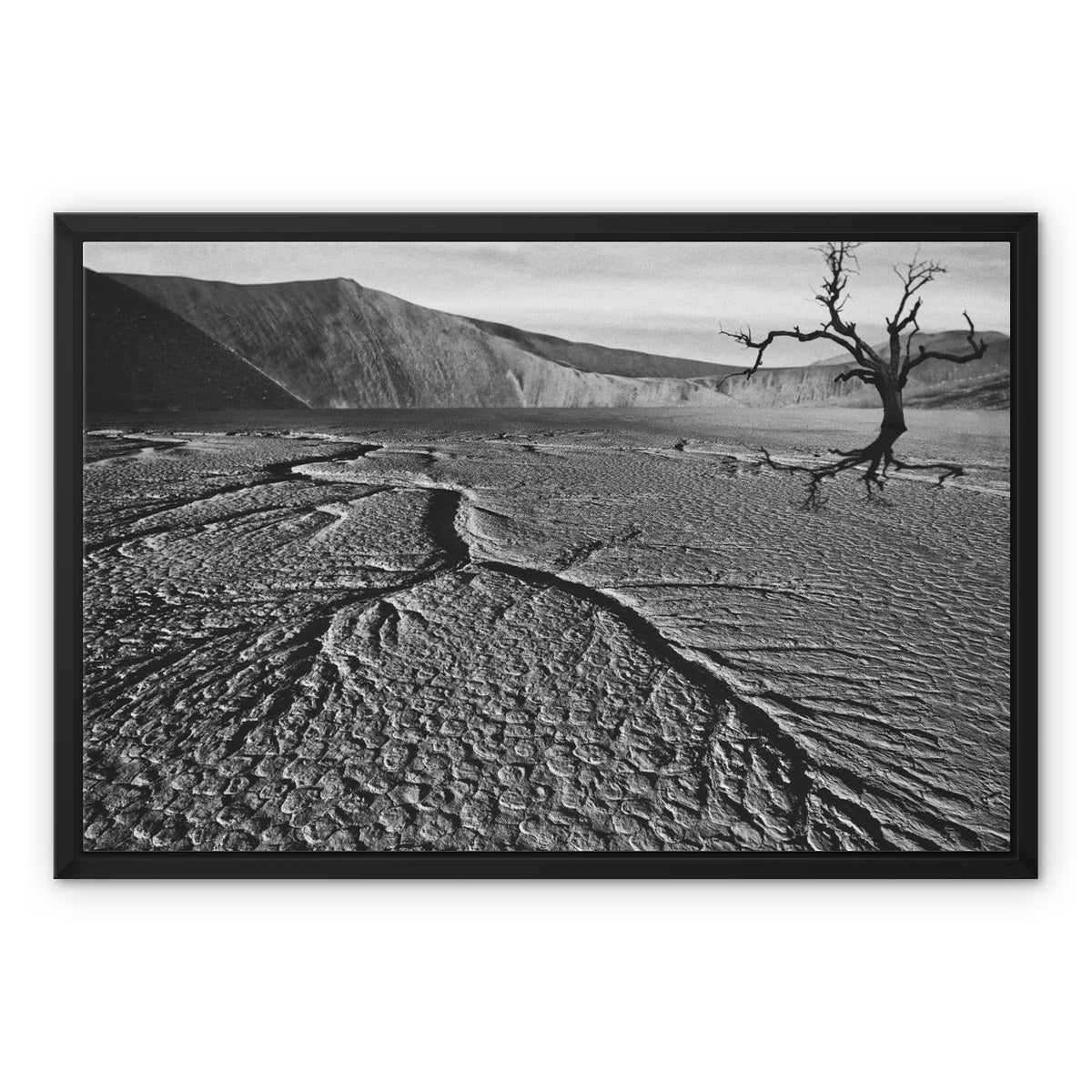 Whither Ground Framed Canvas