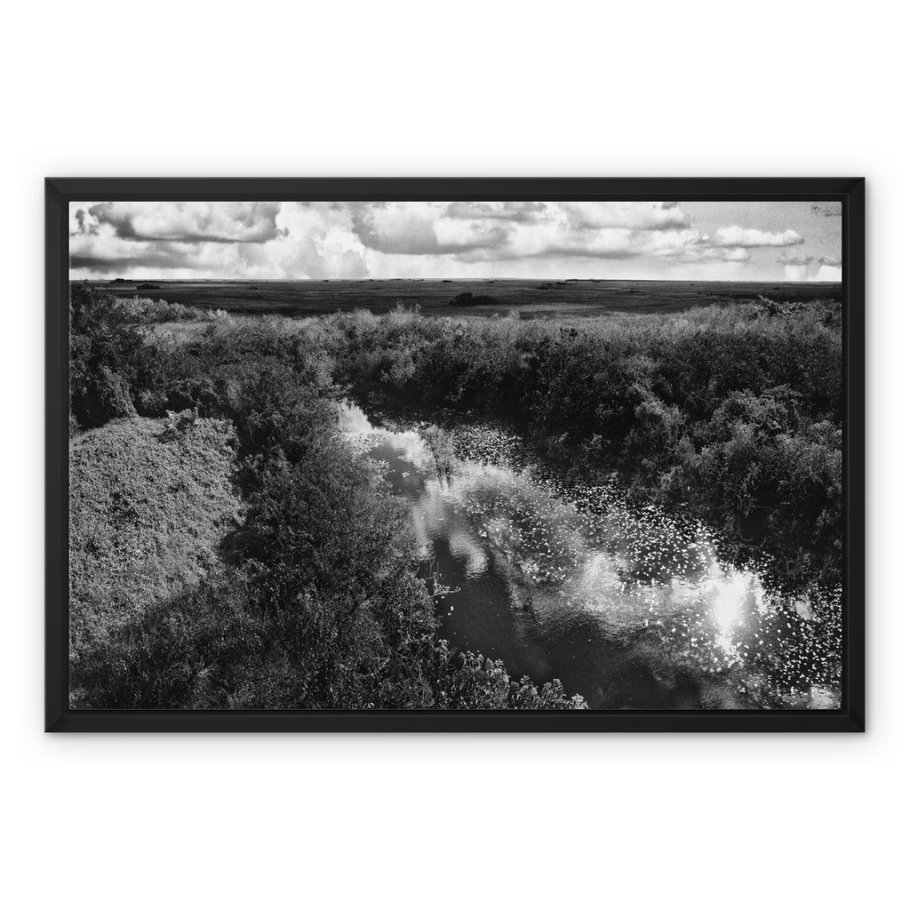 Everglades Untouched Framed Canvas