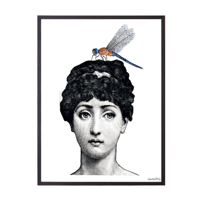 Lady With Dragonfly Framed Print