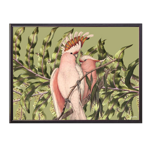 Pink Birdies Framed Print