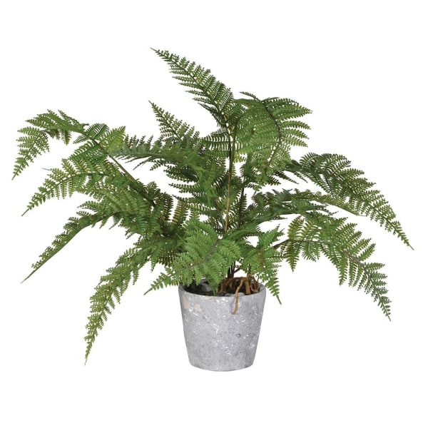 Faux Fern Plant in Cement Pot