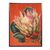 Protea Flower Framed Print