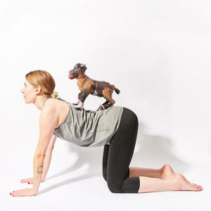 goat-yoga-party-game-kikkerland-pose-example