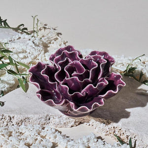 chive-purple-sea-lettuce-ceramic-coral